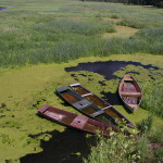 Monitoring zasięgu zalewów i podtopień w Biebrzańskim Parku Narodowym