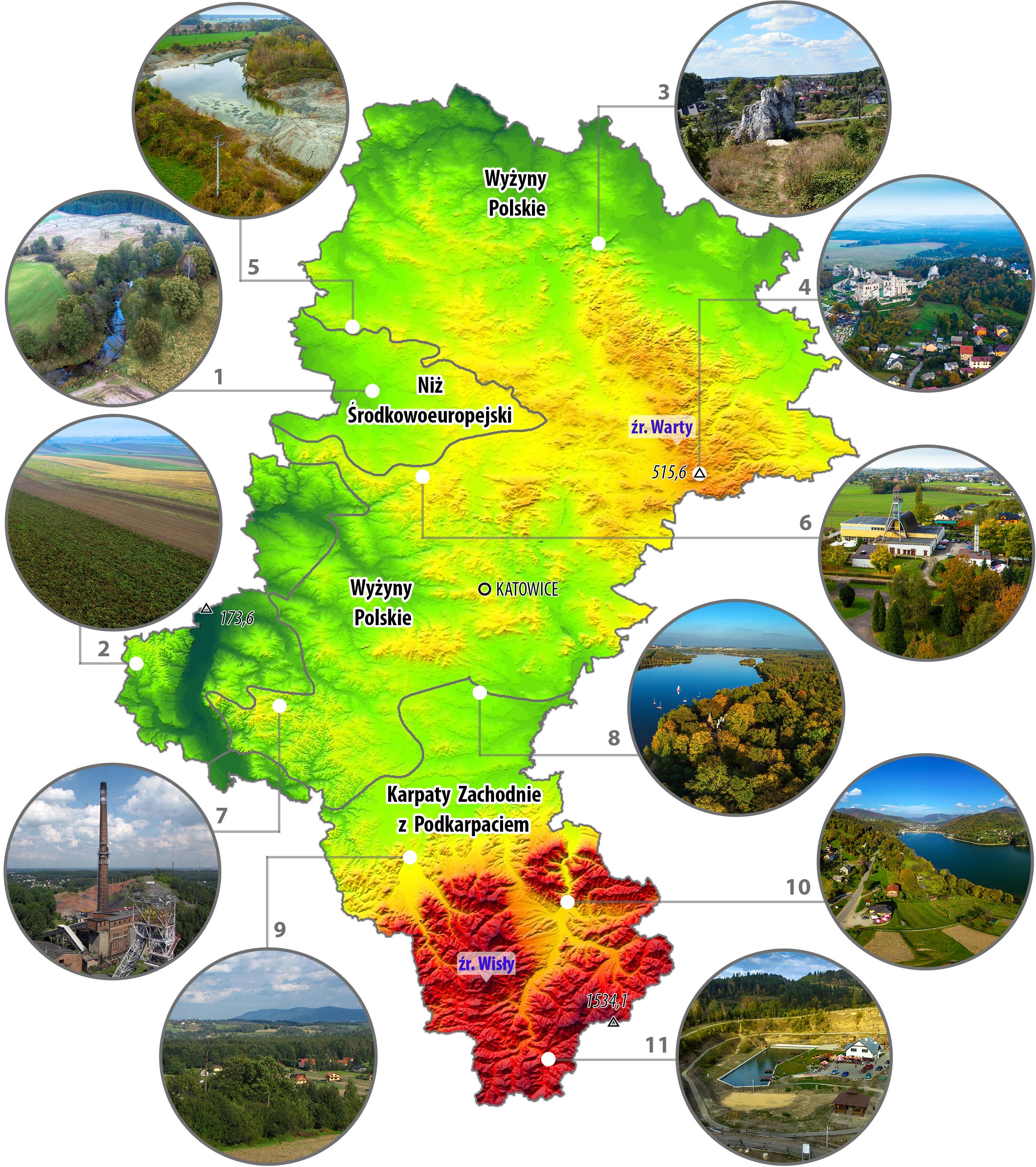 """Rys. 1. Województwo śląskie położone jest na terenie trzech prowincji fizycznogeograficznych (Kondracki, 2009), z czym związane jest wyraźne zróżnicowane środowiska przyrodniczego, zarówno pod względem georóżnorodności jak i bioróżnorodności. Niż Środkowoeuropejski: 1 – dolina Małej Panwi (dopływ Odry) w okolicach Kokotka; 2 – wysoczyzna lessowa na terenie gminy Pietrowice Wielkie; Wyżyny Polskie: 3 – górnojurajski ostaniec skalny Skała Miłości nad przełomem rzeki Warty w gminie Mstów; 4 – ruiny zamku Ogrodzieniec wśród skał wapiennych najwyższego wzniesienia Wyżyny Krakowsko-Częstochowskiej (Góra Janowskiego) o wysokości 515,6 m n.p.m.; 5 – nieczynna glinianka iłów górnotriasowych w Lipiu Śląskim k/Lublińca, miejsce występowania górnotriasowych szczątków gadów lądowych; 6 – Zabytkowa Kopalnia Srebra w Tarnowskich Górach; 7 – Zabytkowa Kopalnia Węgla Kamiennego """"Ignacy"""" w Rybniku; Karpaty Zachodnie z Podkarpaciem: 8 – sztuczny zbiornik wodny (Jezioro Paprocańskie) powstały w 1796 roku dla potrzeb nieczynnej Huty Paprockiej w okolicy Tychów; 9 – Pogórze Śląskie przecięte doliną Wisły w okolicy Skoczowa; 10 – Przełom rzeki Soły (dopływ Wisły) dzielący Beskid Mały na część zachodnią (Pasmo Czupla i Magurki) i wschodnią (tzw. Beskid Andrychowski); 11 – nieczynny kamieniołom piaskowców magurskich w Glince przekształcony w teren rekreacyjno-wypoczynkowy; 173,6 – najniższy punkt wysokościowy w miejscowości Ruda, 1534,1 – najwyższy punkt wysokościowy na zboczach Pilska. (Źródło: Tokarska-Guzik B., Chybiorz R., Parusel J.B. (red.) 2015)"""