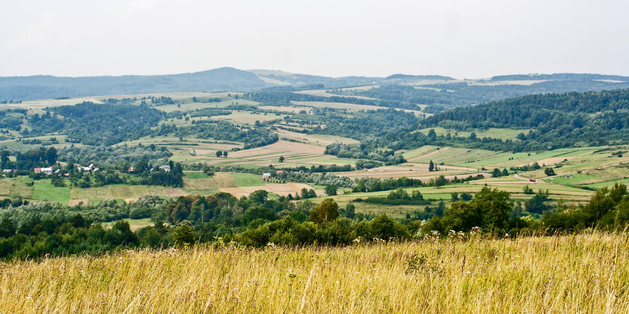 Fot. 1. Pogórze Przemyskie, widok z Kalwarii Pacławskiej na niezalesiony szczyt Kopystańki.