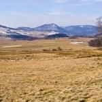 Śląska przyroda on-line