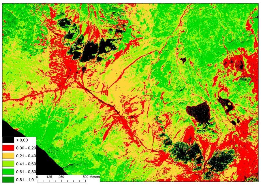 Poznaj możliwości teledetekcji: mapa rozkładu wskaźników roślinności