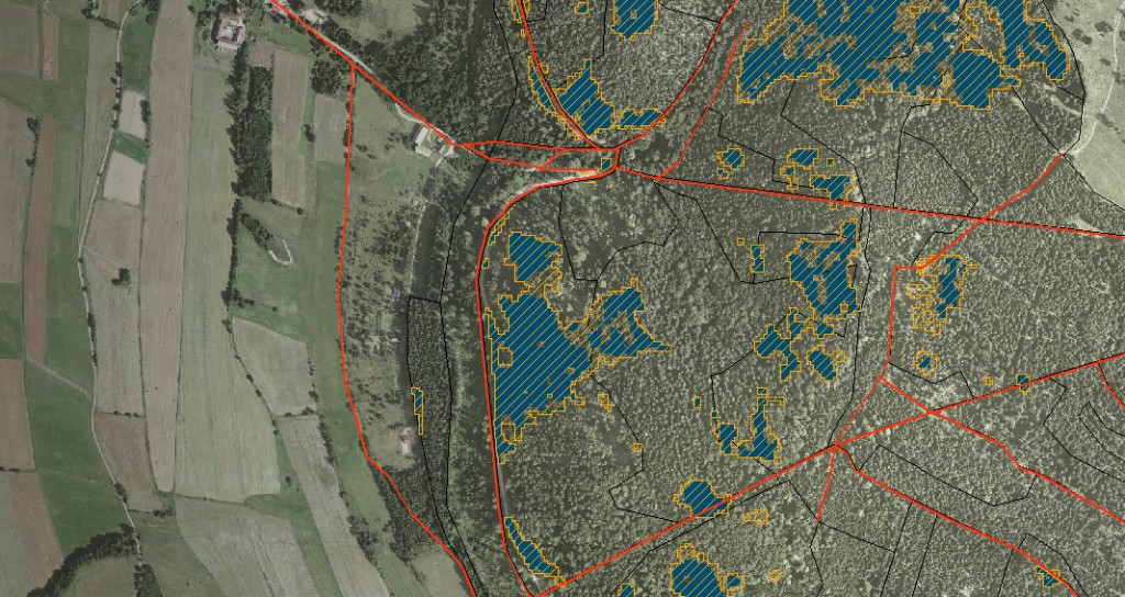 Rys. 3 Lokalizacja wywrotów i złomów - kolor granatowy, rzeczywiste tereny pozyskania drewna – szraf pomarańczowy (powstałe w wyniku konieczności korekty granic).