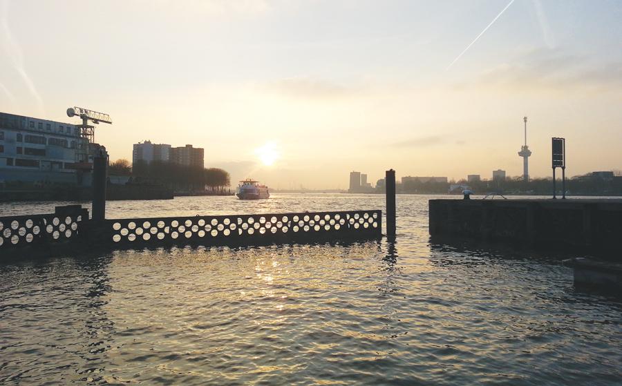 Fot. 1. Choć Rotterdam jest największym portem cargo w Europie, jest czymś więcej niż hubem wysyłkowym. Ogromny kompleks przemysłowy w porcie jest głównym czynnikiem rozwoju gospodarczego dla całego regionu (Fot. Marten Hogeweg).