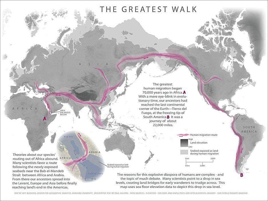 Rys. 1 . Mapa The Greatest Walk (Najdłuższy Spacer) przedstawia ścieżki prehistorycznych migracji. Salopek spędzi osiem lat odtwarzając trasę 21 000 mil od wschodniej Afryki po południowy kraniec Ameryki Południowej. Zdjęcie dzięki uprzejmości Harvard University Center for Geographic Analysis.