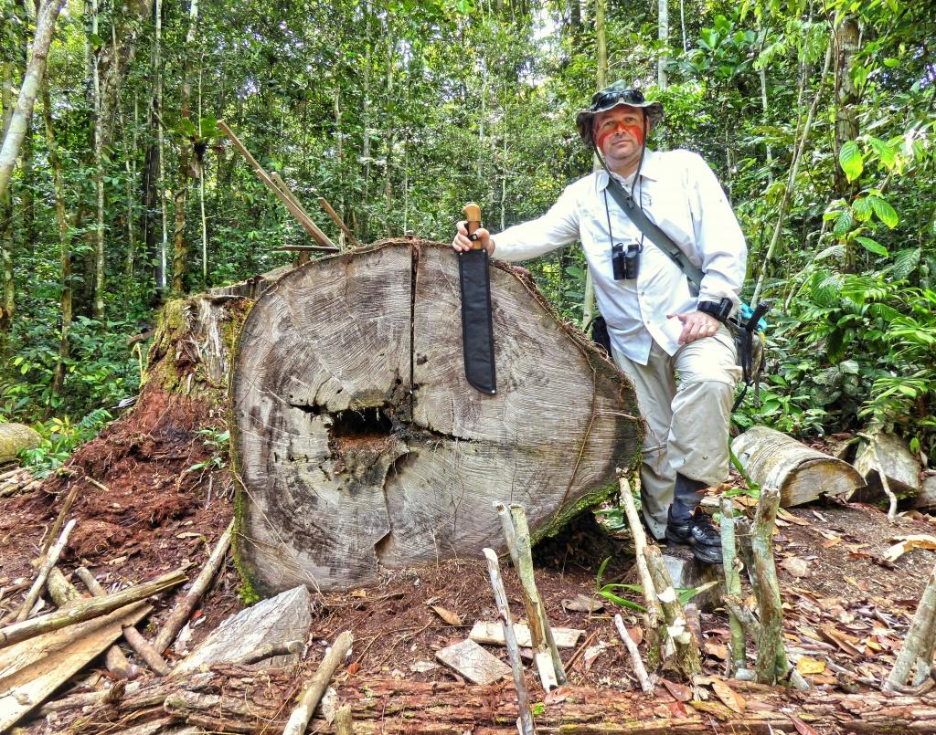 Piotr Wężyk przy pniu ściętego drzewa, z którego na miejscu wybudowano łódź (pirogę). Tatuaż indian Tikuna na twarzy autora wykonano sokiem z owoców jednego z drzew.