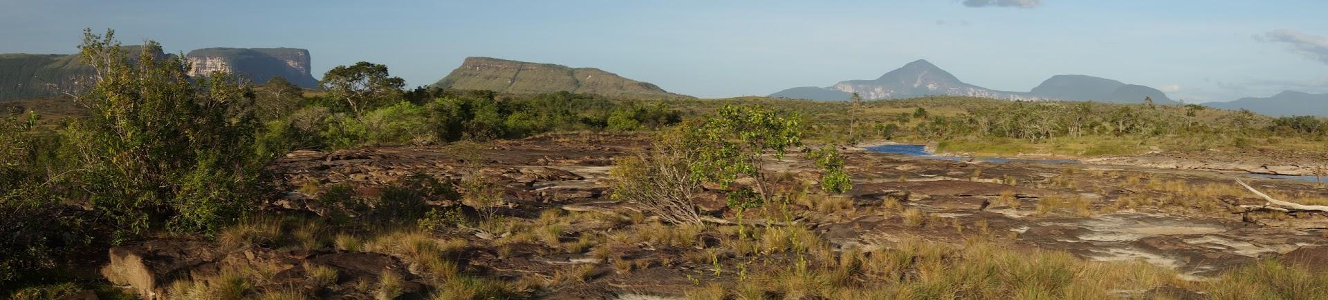 Park Narodowy Canaima (Wenezuela). W oddali charakterystyczne góry stołowe (tepui).