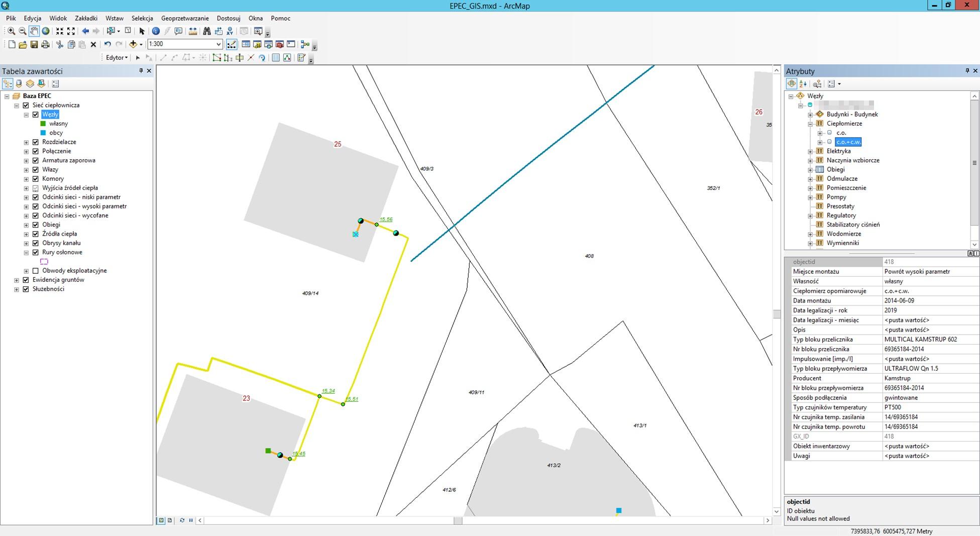Rys. 2. Aplikacja edycyjna w środowisku ArcGIS Desktop.