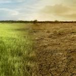 Geoportal o zmianach klimatu i ich oddziaływaniach na obszarze Polski