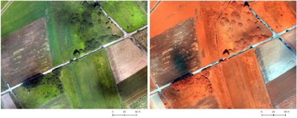 Ryc. 1. Ortofotomapa w kompozycji RGB i CIR, opracowana w programie Drone2Map.