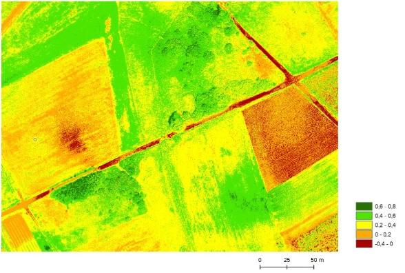 Ryc. 2. Wskaźnik NDVI, opracowany w programie Esri (Environmental Systems Research Institute) ArcGIS 10.3.