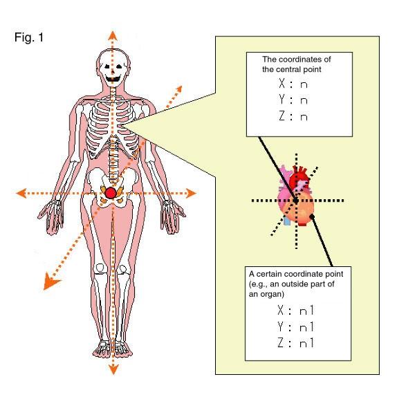 Rys. 1. Tworzenie mapy ludzkiego ciała. Źródło: Pasco Corporation.