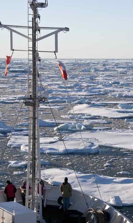 Rys. 3. Lód morski na wodach Oceanu Arktycznego u wschodniego wybrzeża północnej Grenlandii.