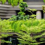 Społeczna diagnoza stanu i jakości błękitno-zielonej infrastruktury w przestrzeni miasta Opola