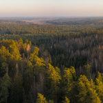 GIS i dane geoprzestrzenne w parku krajobrazowym? TAK!